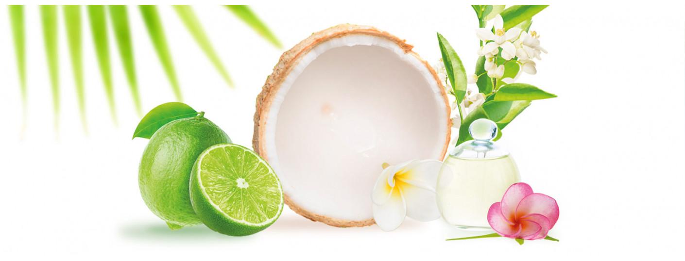 Coconut Lime Blossom